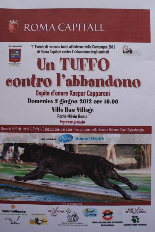 volantino_un_tuffo_contro_labbandono.jpg
